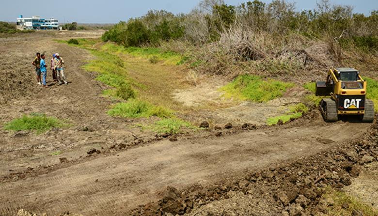 Dueño de hotel no presentó Plan  para sembrar mangles en El Cisne