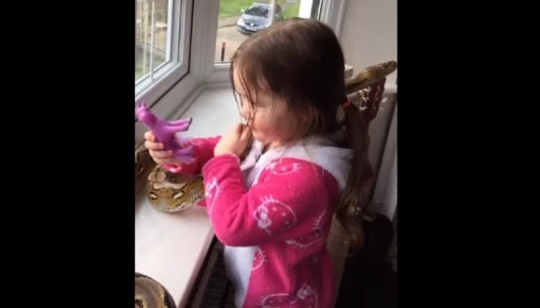 Video de niña jugando con una pitón se vuelve tendencia en redes sociales