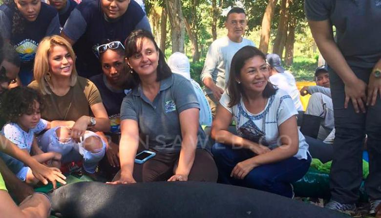 Adriana Lucía, nombrada embajadora del proyecto de conservación de los manatíes