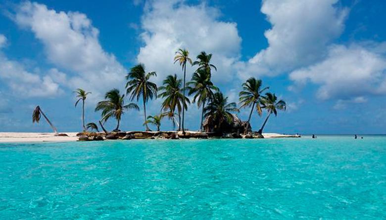 La mitad de los animales vertebrados en peligro de extinción viven en islas