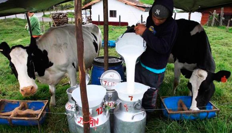 Colombia ya puede exportar productos con leche a la Unión Europea