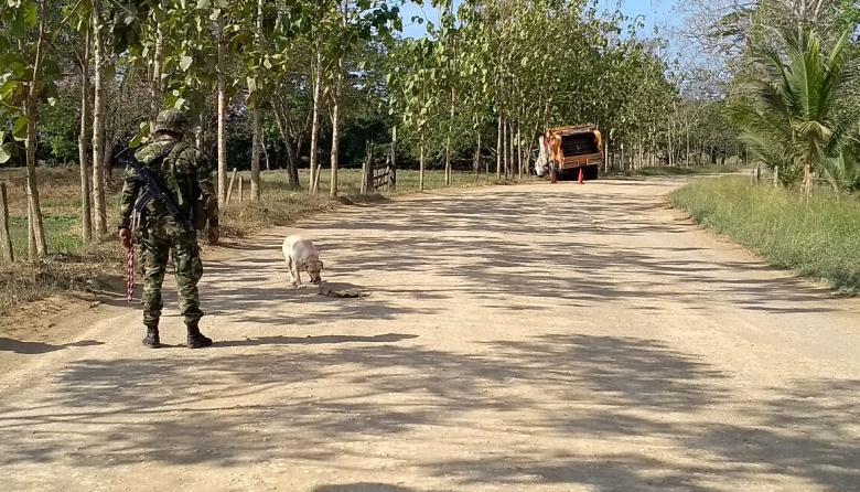 Canino olfatea cilindro con explosivos en Canalete, Córdoba