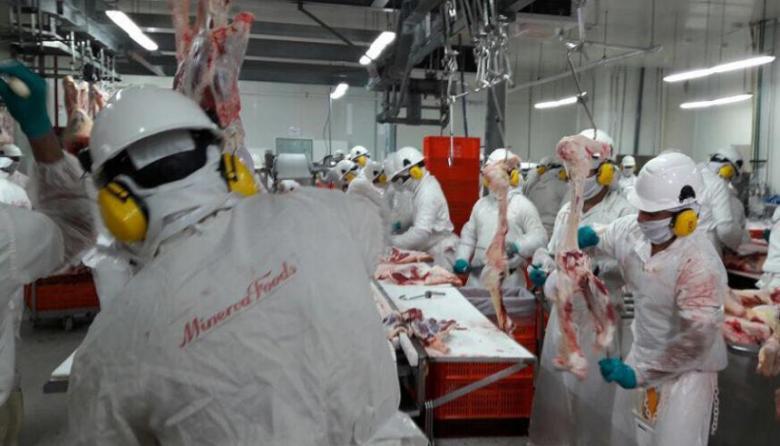 Trabajadores de la empresa Minerva Foods.