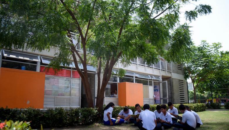 Un grupo de estudiantes de 7°B reciben clases a la sombra de un árbol.