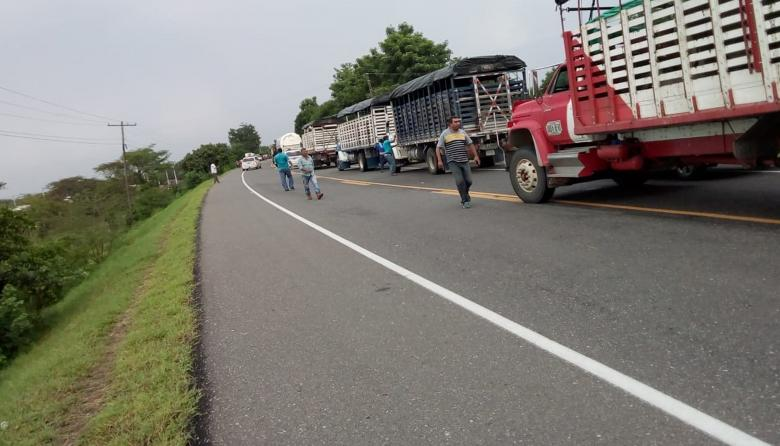 Fila de camiones de carga pesada en la vía Bohórquez.