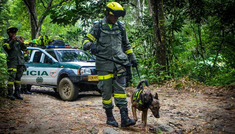 El  patrullero Juan Yánez se apresta a iniciar la búsqueda guiado por 'Homero' , el pastor holandés clave en la localización de personas en diferentes terrenos.