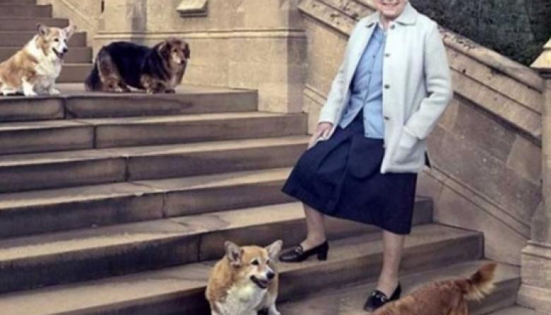 """Isabel II """"consternada"""" por la muerte de Whisper, su último perro corgi"""