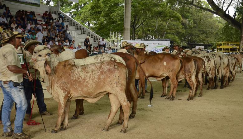 Feria Ganadera de Sabanalarga y Asamblea de Asoganorte