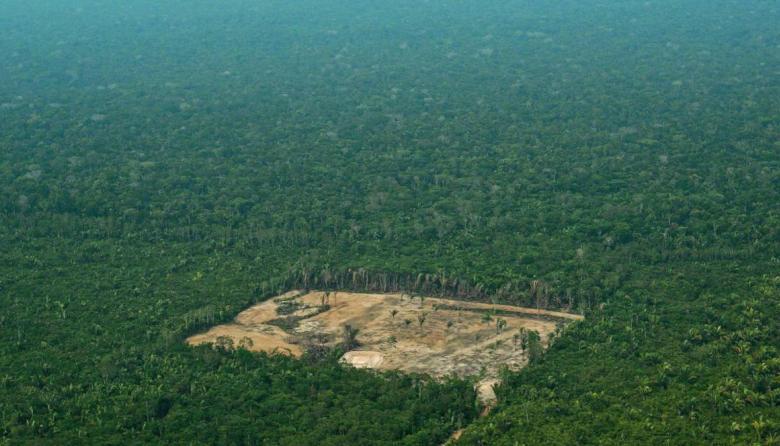 La deforestación en la Amazonía amenaza con nueva ola de incendios