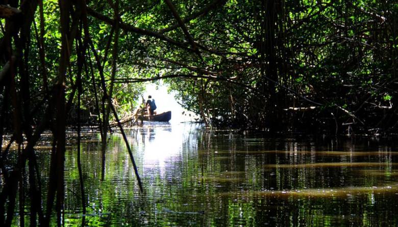 Parque Isla Salamanca es sujeto de derechos