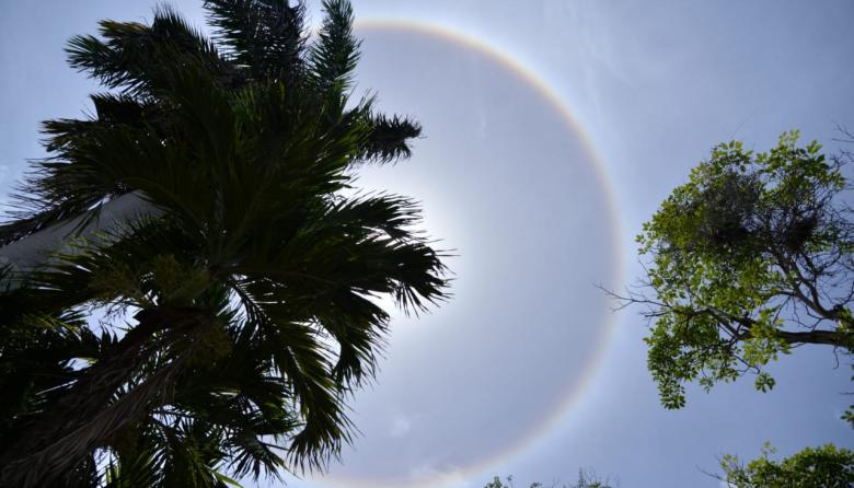 Barranquilleros captan halo solar este viernes