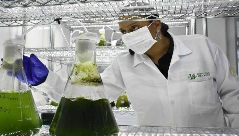 Premio internacional a proyecto de limpieza de aguas con microalgas en Sucre
