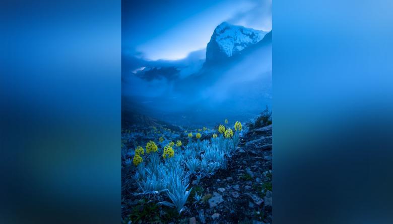 'Inesperadamente' es la imagen captada en el Cocuy con la que Gabriel Eisenband Gontovnik ganó en el Wildlife Photographer.