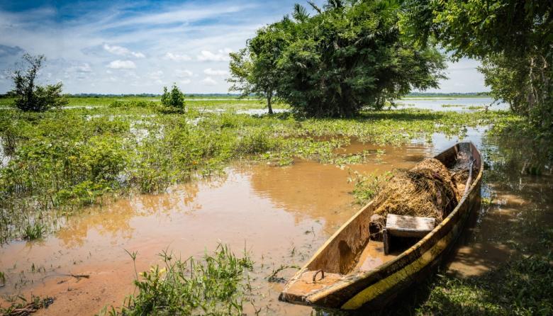 Fondo Adaptación invierte $15 mil millones en la Mojana
