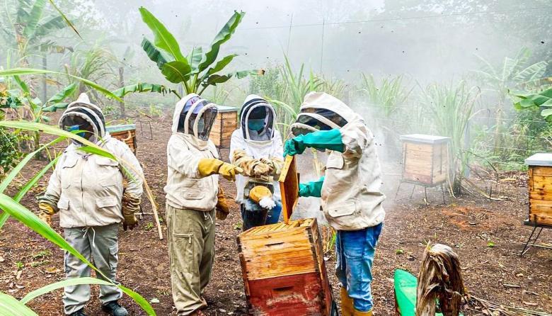 Cerrejón dona un apiario al municipio de Hatonuevo