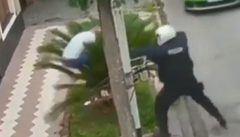 Presunto ladrón se escondió detrás de una palmera huyendo de la Policía