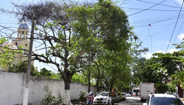 """Comunidad del barrio el Recreo advierte sobre amenaza de """"la pajarita"""""""