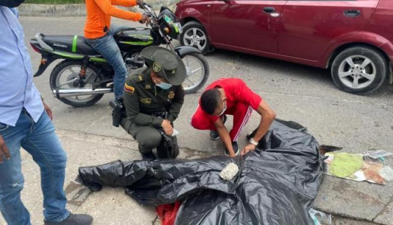 Muere caballo en Cartagena por aparente exceso de trabajo