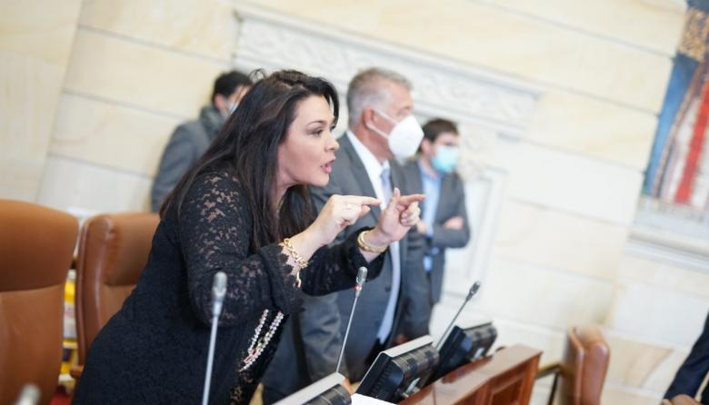 'Pelotera' en la Cámara por moción de censura a Mintic
