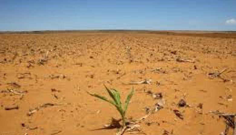 Cambio climático y desastres