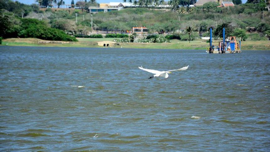 Solicitan resultados de estudios ambientales en lago de El Cisne
