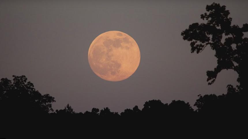 Superluna rosada: alístese para ver este espectáculo desde su ventana