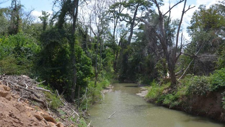 El arroyo Bruno, el cual fue desviado por Cerrejón en 700 metros hacia el norte en un tramo de 3,6 km.