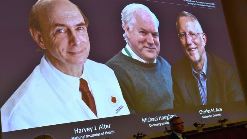 Estos tres virólogos son los ganadores del Nobel de Medicina 2020.