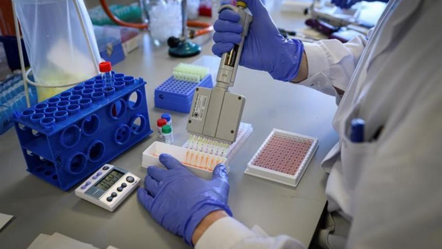 Células madre de tejido umbilical reparan daños por Covid-19
