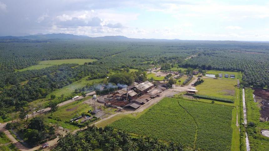Córdoba contará con planta extractora de aceite de palma
