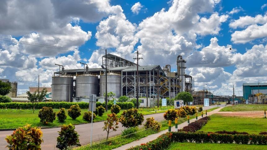 Crece interés de 9 empresas en la adquisición de Bioenergy