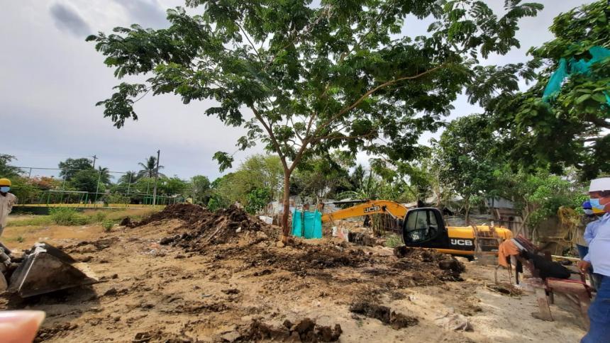 Cardique reubica árbol de campano en Santa Rosa, Bolívar
