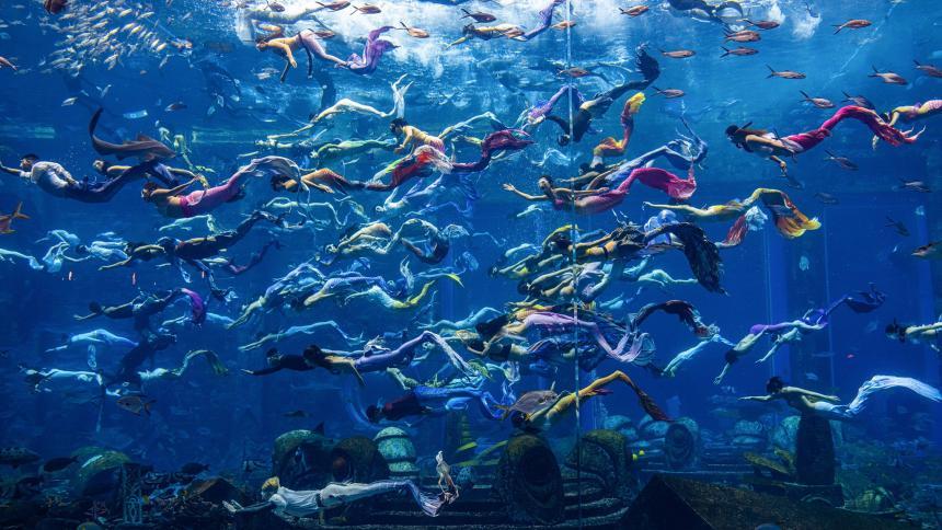 Show de sirenas acuático más grande del mundo establece récord Guinness