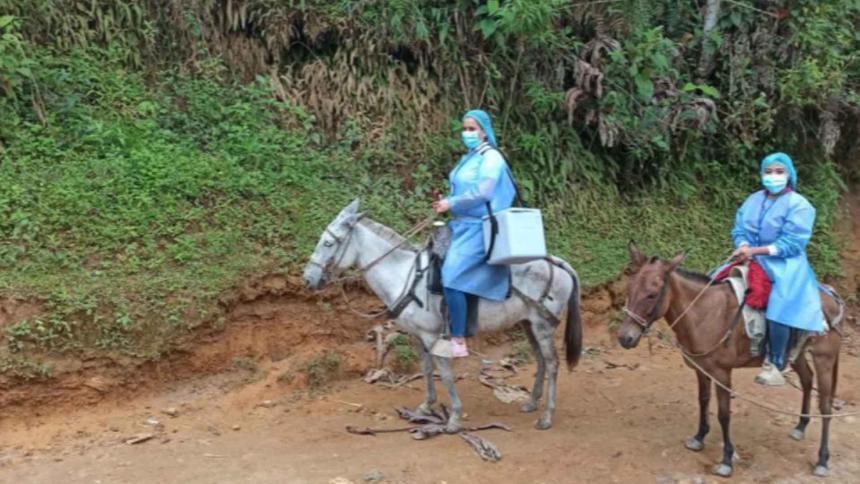 A lomo de mula llegan las vacunas a la Sierra Nevada