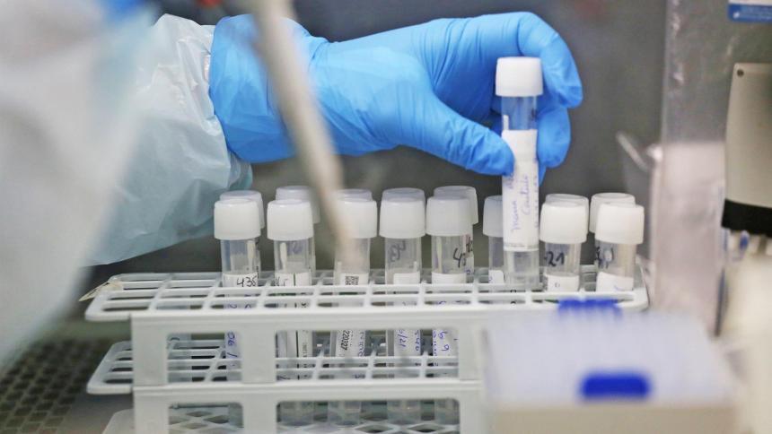 Una investigación científica apunta a un origen zoonótico de la covid-19