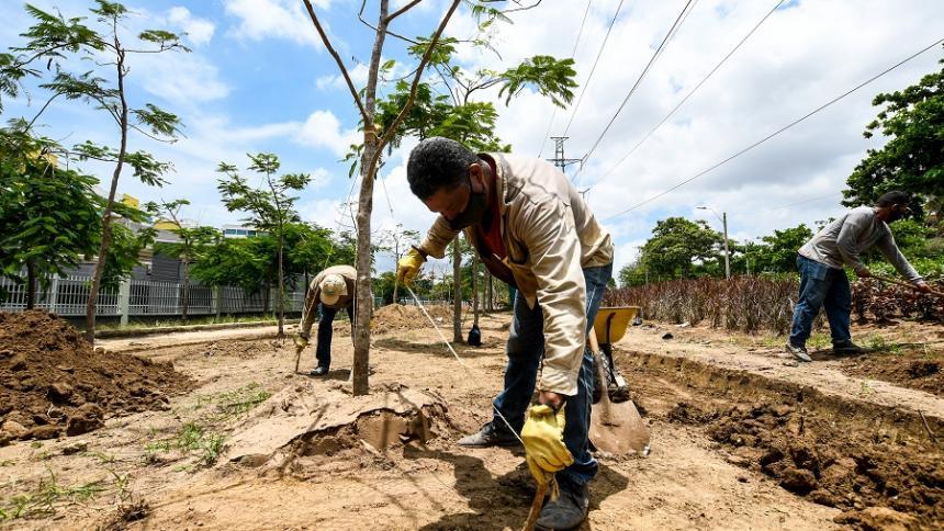 En 20 años, Barranquilla espera tener verdes 50 % de sus zonas públicas