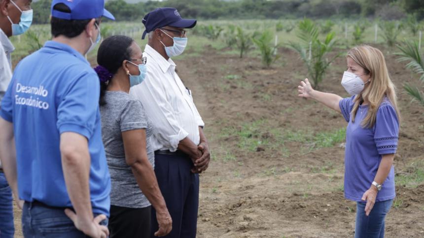 La siembra de palma de aceite revoluciona el campo del sur del Atlántico