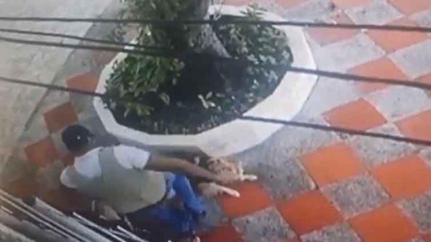 Indignación por paseador que fue captado pateando brutalmente a un perro en El Silencio