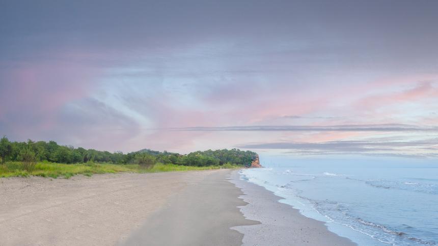 Un oasis viviente, inspirado en los colores y formas del mar