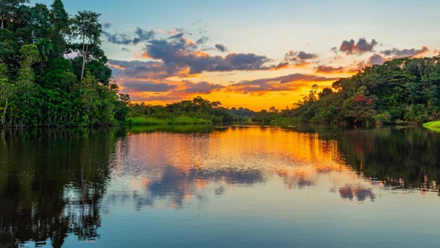 Amazonas: 'el pulmón del mundo' que debes conocer