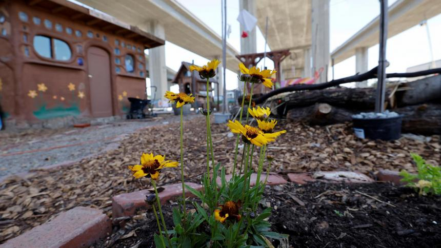 Un jardín de paz para campamento de personas sin hogar