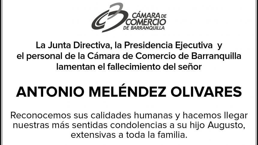 ANTONIO MELÉNDEZ
