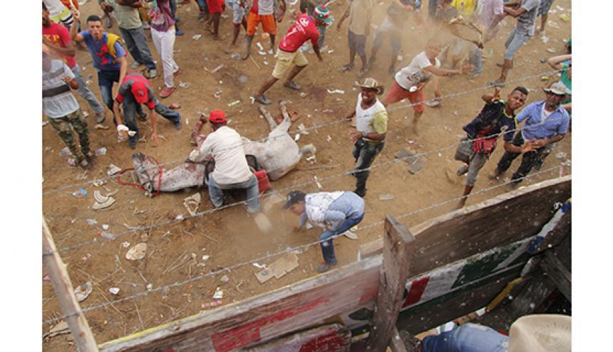 El reportero capta la imagen en plena arena y los aficionados le lanzan objetos.