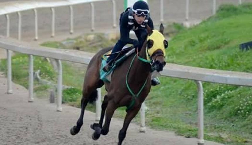 Renato Rivero Miranda durante una de las carreras de caballo en Venezuela.