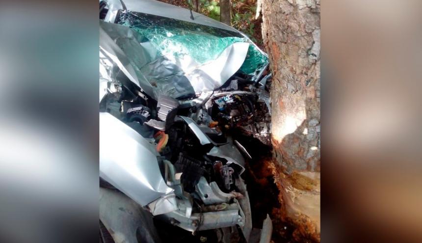 El vehículo quedó destrozado tras impactar contra el árbol.