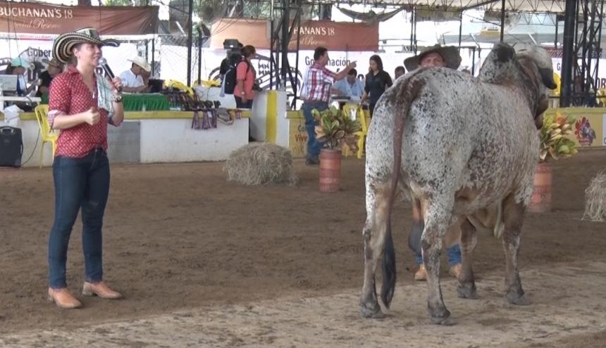 La juez brasilera, Luciana Queiroz, una de las mejores de su país, que es la gran potencia del ganado de la raza Gyr en América, transmitirá sus conocimientos a los ganaderos.