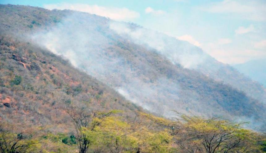 Incendio forestal . Imagen de referencia.