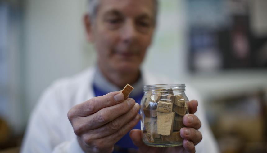 Peter Gasson, investigador líder en reconocimiento de madera, con piezas utilizadas en el laboratorio.