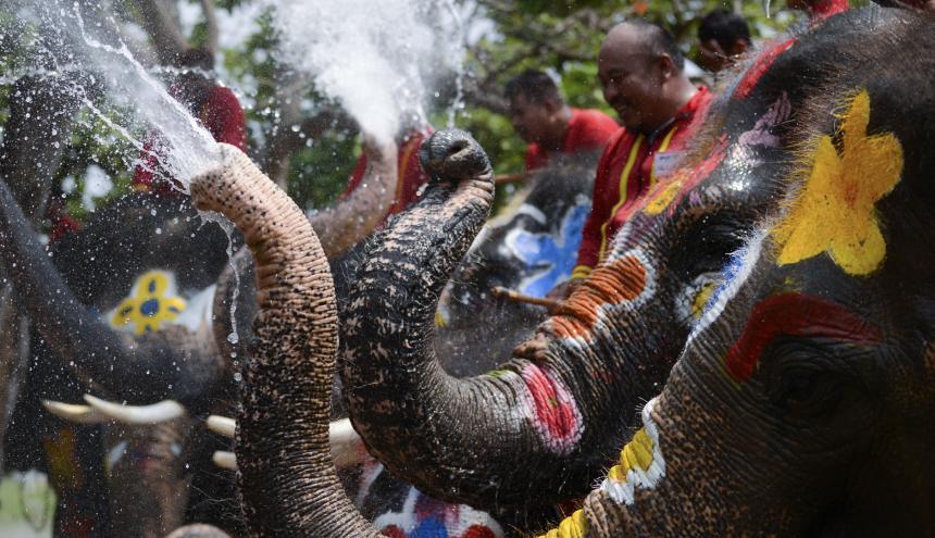 Oficialmente la fiesta comienza el sábado, con el Año Nuevo budista.