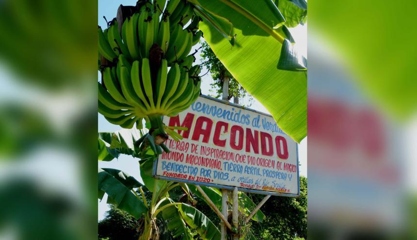 El pueblo tomó su nombre del árbol Macondo el cual pertenece a la familia de bombáceas, parecido a la ceiba.